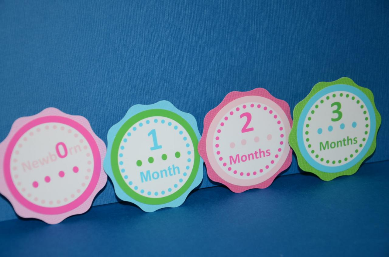 First Year Photo Small Clips, First Year Banner, Dots Birthday Party, Hot pink, Blue, Green and Light Pink Theme one color Dots