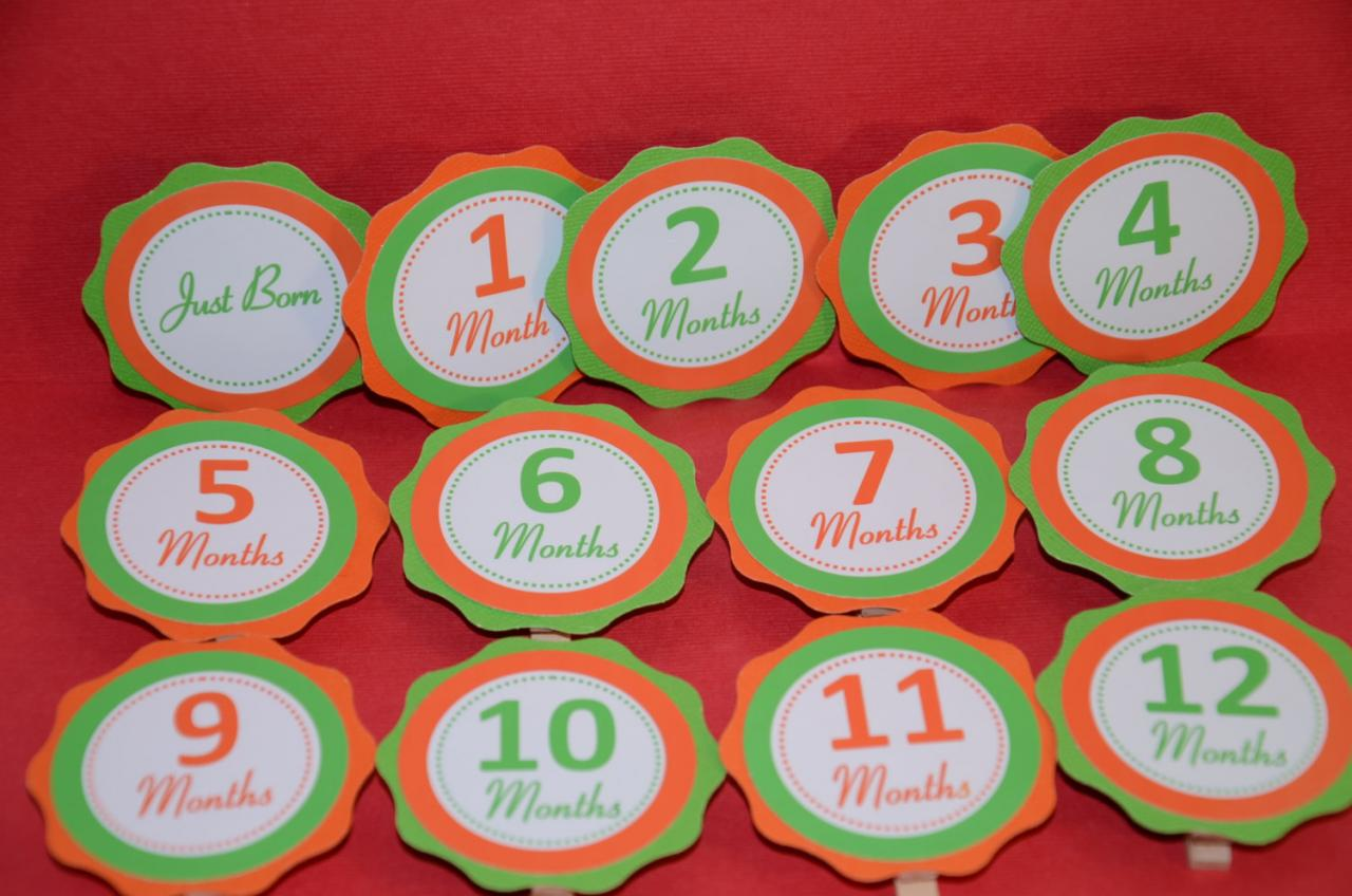 First Year Photo Small Clips, First Year Banner, Birthday Party, Orange and Lime Green Theme