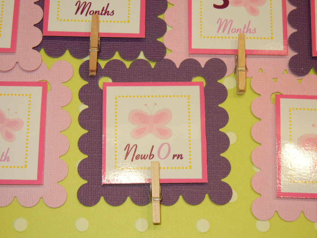 First Year Photo Mini Clips, First Year Banner, Butterfly Birthday Party, Any Theme Hot Pink and Dark Purple butterfly