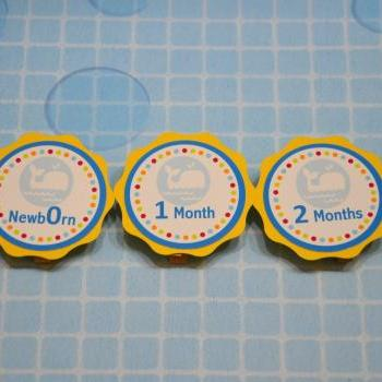 First Year Photo Clips, First Year Banner, Whale Birthday Party, Any Theme