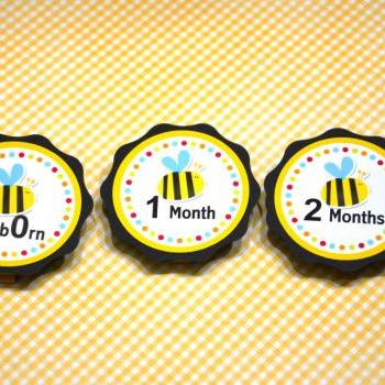 First Year Photo Clips, First Year Banner, Bee Birthday Party, Any Theme