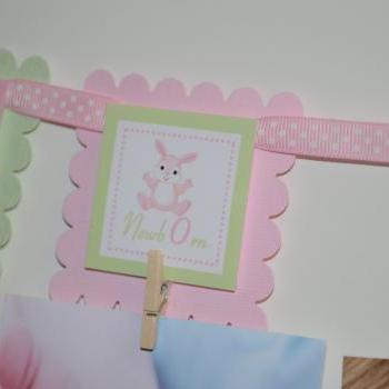First Year Photo Mini Clips, First Year Banner, Bunny Birthday Party, Bunny Theme, Light Pink and Light Green