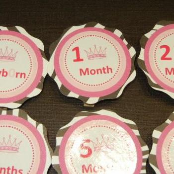 First Year Photo Mini Clips, First Year Banner, Princess Birthday Party, Zebra Theme